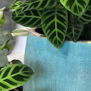 Pots Manna Gum Building And Garden Supplies Ferntree Gully