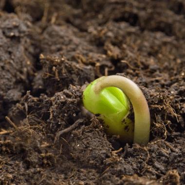 ferntree-gully-garden-supplies-compost-soil