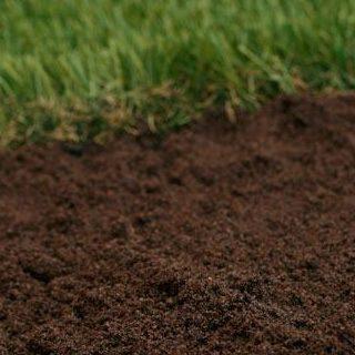 ferntree-gully-garden-supplies-lawn-mix