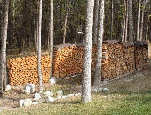 Make Sure You Cover The Top Of Firewood