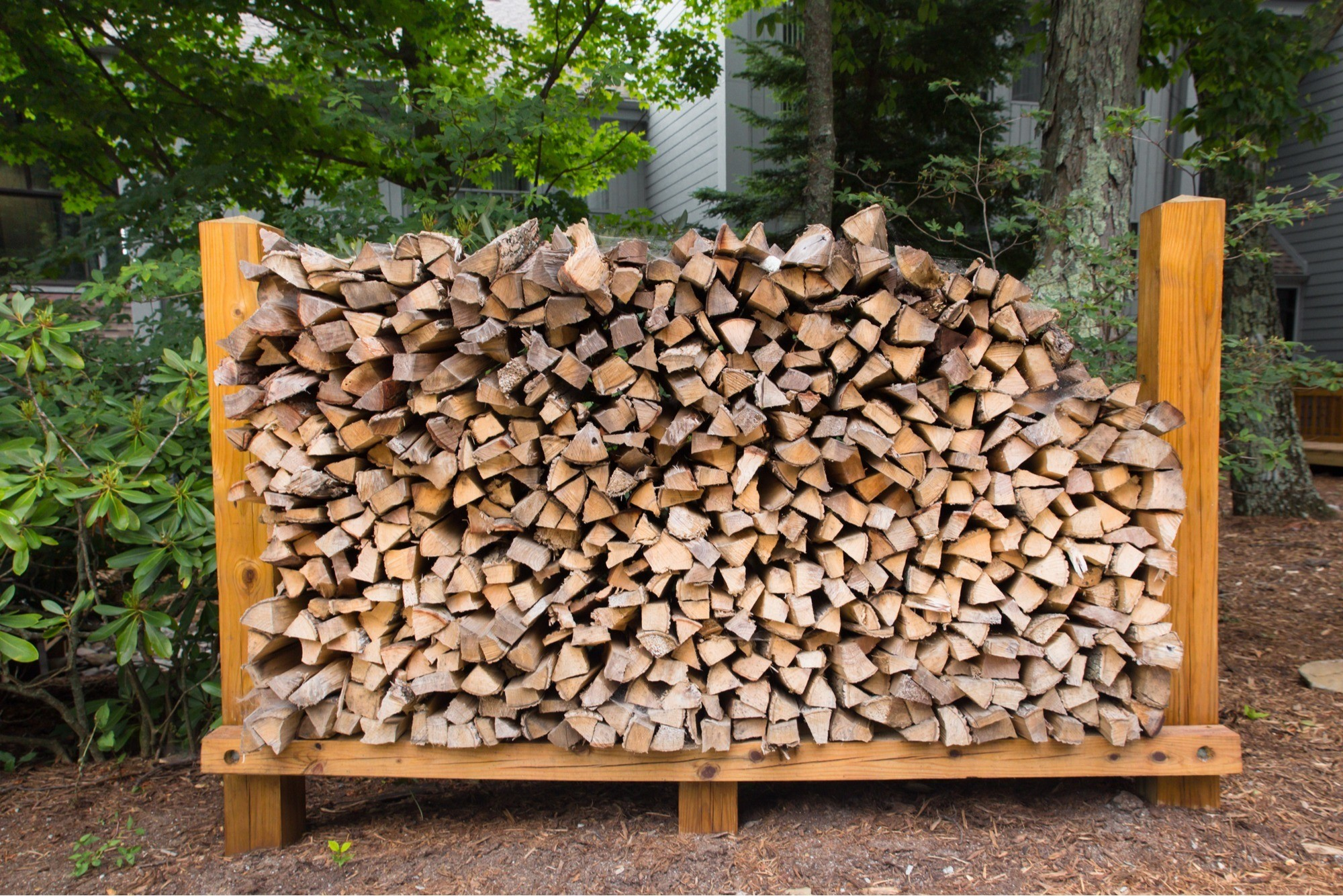 Make Sure Firewood Is Stored Outside Off The Ground
