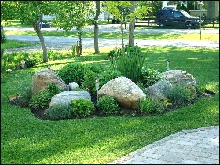 Rocks In Garden