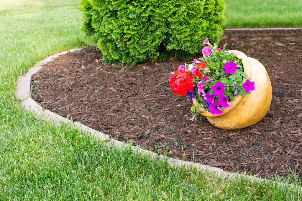 Mulch Helps Keep Water In