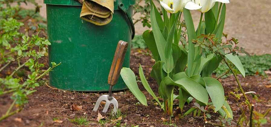 Mulch Gardens Each Year