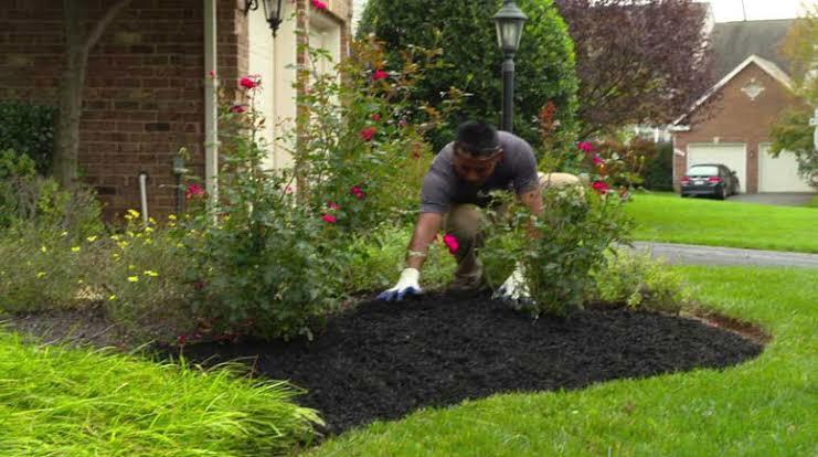 Applying Mulch Give Your Garden Love